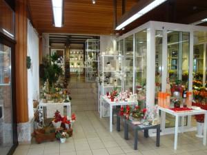 Blumenhaus Dries, Neckarbheim